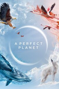 A Perfect Planet